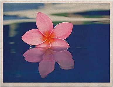 Kess InHouse Plumeria Kess Naturals 帆布艺术画 Bree Madden 制造,60.96 x 91.44 cm