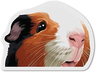 WIRESTER 冰箱磁贴装饰,适用于厨房冰箱 Black White Brown Guinea Pig FRMAGNET-FRMNETA4463