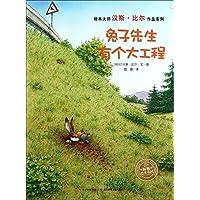 海豚绘本花园·汉斯·比尔绘本系列·兔子先生有个大工程