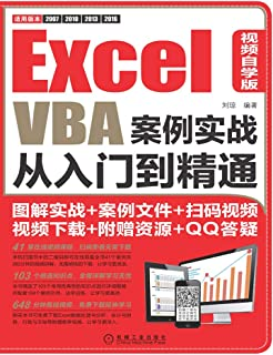 Excel VBA案例实战从入门到精通:视频自学版