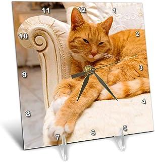 "3dRose Carsten Reisinger - 摄影 - 快乐橙色虎斑猫 华丽的扶手椅上放松 - 桌钟 (dc_236171) 6"" x 6"" dc_236171_1"
