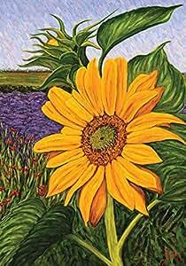 Toland Home Garden 金色田园 71.12cm x 101.6cm 装饰夏季秋季黄色向日葵 家旗