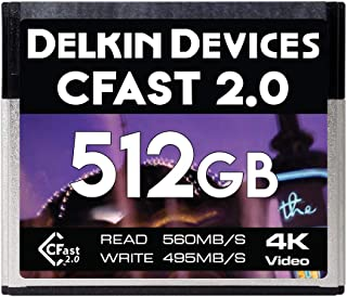 Delkin Devices 256GB CFast 2.0 存储卡