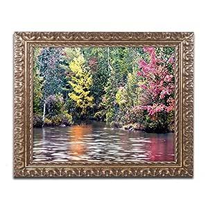 Trademark Fine Art Adirondacks Artwork by David Ayash, 16 by 20-Inch, Gold Ornate Frame