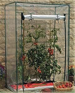 Tomato greenhouse PVC 盖。