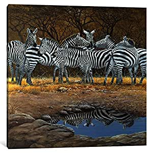 iCanvasART 9349-1PC3-18x18 Zebras Canvas Print by Harro Maass, 0.75 by 18 by 18-Inch