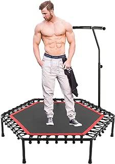 shaofu 50 英寸安静 Rebouners 迷你蹦床室内运动,带可调节扶手,适用于成人儿童 - *大 220 磅