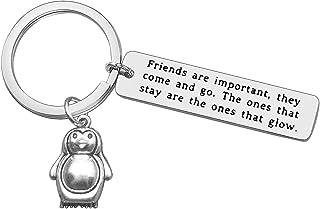友情钥匙扣送给好友、企鹅礼物、钥匙扣、真朋友首饰、女士、男士、BFF 毕业、生日礼物、朋友们非常重要,他们来回和去钥匙圈送给她的朋友