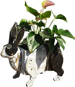 REVOLUMINI 仿真动物花盆 创意花盆 手工制作 木制收纳盒 长方形 可爱 卡通 花盆 室内装饰 木制装饰 礼物 Rabbit