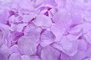 La Tartelette 丝绸玫瑰花瓣婚礼花饰 梅红色 LTCS-00120