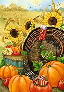 Toland Home Garden Hello Turkey 28 x 40 Inch Decorative Thanksgiving Harvest Fall Autumn Pumpkin House Flag