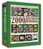 2000种观花植物原色图鉴