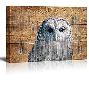 """wall26 - 乡村主题帆布墙艺术家居装饰 An Owl 12"""" x 18"""" CVS-LISA-RUSTIC-009-12x18x1.50"""