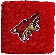 Franklin Sports NHL 2.5 英寸刺绣腕带