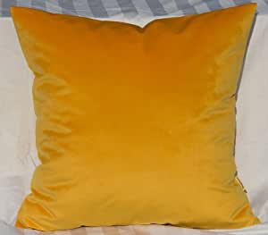 "TangDepot 纯色天鹅绒抱枕套/欧式枕套/沙发,超豪华柔软枕套,多种颜色和尺寸可供选择 金色 22"" x 22"" TPCover-SolidVelvet-22x22Gold"