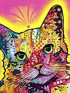 KOTWDQ DIY 钻石画*积方形树脂猫