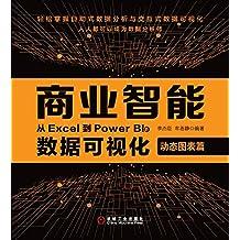 商业智能:从Excel到Power BI的数据可视化.动态图表篇