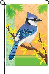 Premier 51427 花园闪耀旗帜,春季蓝鸟,30.48 x 45.72 厘米