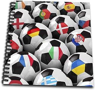 carsten reisinger illustrations 插图–英格兰德国葡萄牙西班牙, DM ,捷克共和国意大利法国希腊乌克兰国旗 ON 足球球–绘本