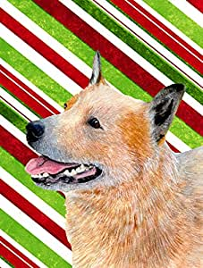 Australian Cattle Dog Candy Cane Holiday Christmas Flag 多色 大
