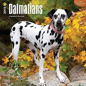 Dalmatians 2015 挂历