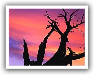 ArtWall Dean Uhlinger 'Desert Magic Hour' Unwrapped Flat Canvas Artwork, 22 by 28-Inch