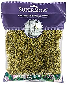 supermoss 西班牙语 Moss preserved Basil 120 cubic in Bag (Appx. 4oz)
