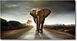 Haichuang Decor Art Elephant Canvas Prints Painting for Wall Decor, 1 Panels Framed