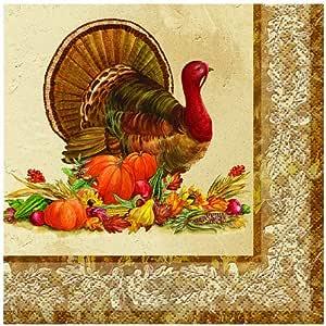 乡村风格土耳其感恩节餐巾纸 多色