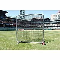 Trigon Sports Procage Pro Screen Net Kit, 10 x 10-Feet