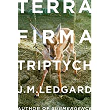 Terra Firma Triptych: When Robots Fly (Kindle Single) (English Edition)