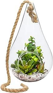 Restaurantware RWA0486 玻璃容器