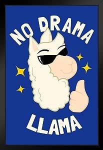 No Drama Llama 趣味海报 30.48 x 45.72 厘米 Multi-color / 10781 Framed in Black Wood 14x20 inch 290396