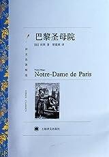 译文名著精选:巴黎圣母院
