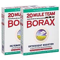 20 Mule Team Borax 天然洗衣增高剂 65 盎司 2 包