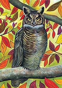 Toland Home 花园森林猫头鹰 31.75 x 45.72 cm 装饰多色秋季叶鸟花园旗帜