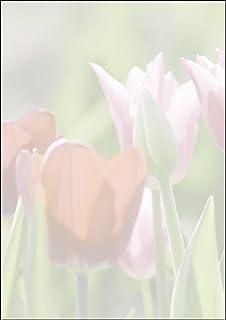 "Sigel DP462 主题印花纸张 信纸 90 克 DIA A4 25 张 Motiv ""Spring fever"" Motiv ""Spring fever"""
