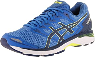 ASICS GT-3000 5 Men's Running Shoe