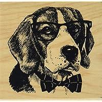 Inkadinkado 60-01242 安装橡胶印章,7.62cm x 7.62cm,Nerdy Dog,红色