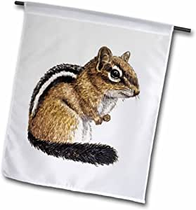 tnmgraphics animals – chipmunk – 旗帜 12 x 18 inch Garden Flag