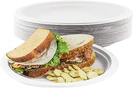 家用一次性碗,可折叠,500 只装,生物降解餐具,环保型袋子,纤维,天然,糖果材料,可微波炉,适用于汤、沙拉、热食品 白色 Plates - 9 Inch CDP-WH-09IN