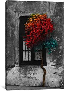 """iCanvasART Tree in Front of Window Rainbow Pop Color Pop Canvas Print by Panoramic Images, 26"""" x 18""""/1.5"""" Deep"""