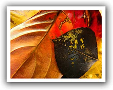 ArtWall 'Fall Impression 4' Unwrapped Canvas Artwork by Dean Uhlinger, 18 by 22-Inch, Holds 14 by 18-Inch Image