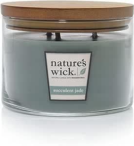 Nature's Wick Woodwick Aura 蜡烛 Succulent Jade 18 盎司. 87797