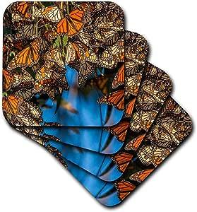 danita delimont–蝴蝶–美国,加州, pismo 海滩 . migrating MONARCH 蝴蝶 .–杯垫 Not Applicable set-of-4-Soft