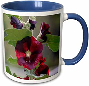 3dRose Beverly Turner Flora 摄影 - 红辣椒红花 - 马克杯 红色/蓝色 11 oz mug_223557_6