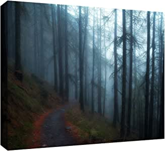 ArtWall 'Woods' Gallery-Wrapped Canvas Art by John Black, 12 by 18-Inch