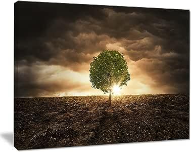 设计艺术 Lonely Tree Under dramatic SKY XL 码风景墙壁艺术