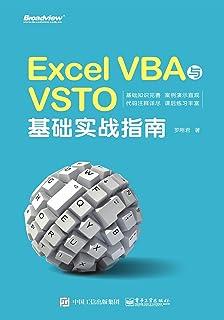 Excel VBA与VSTO基础实战指南
