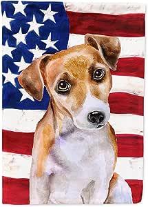 Caroline's Treasures BB9713CHF Jack Russell Terrier #2 爱国装饰帆布户外旗,房间尺寸,多色
